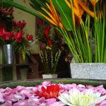 バリのお花